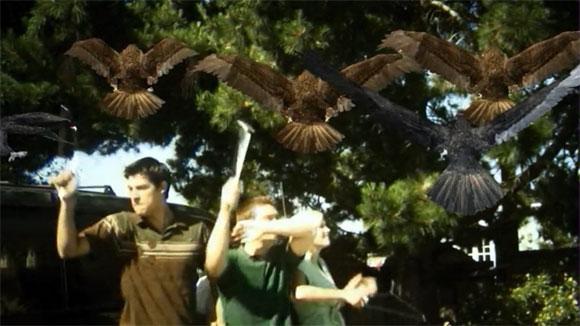 birdemic-34